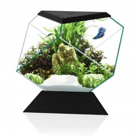 Acuario Nexus Pure BettaLife 5C negro