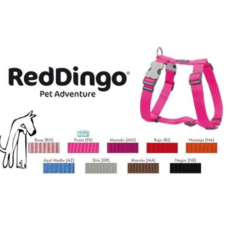 Petral lisos Red Dingo S 12 mm