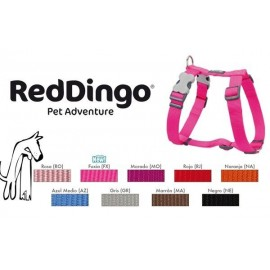 Petral Red Dingo nylon 12 mm cuello 25-39 cm