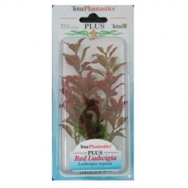 Planta Tetra Red Ludwigia Plantastics Plus 01